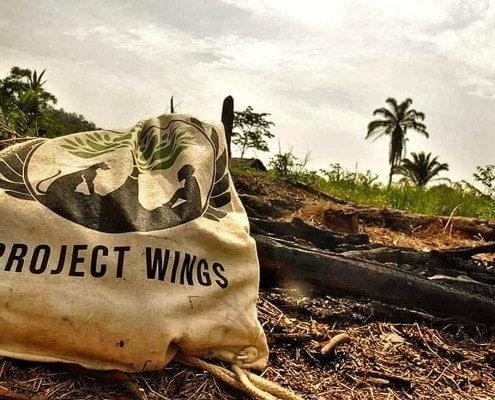 blog espero clothin project wings